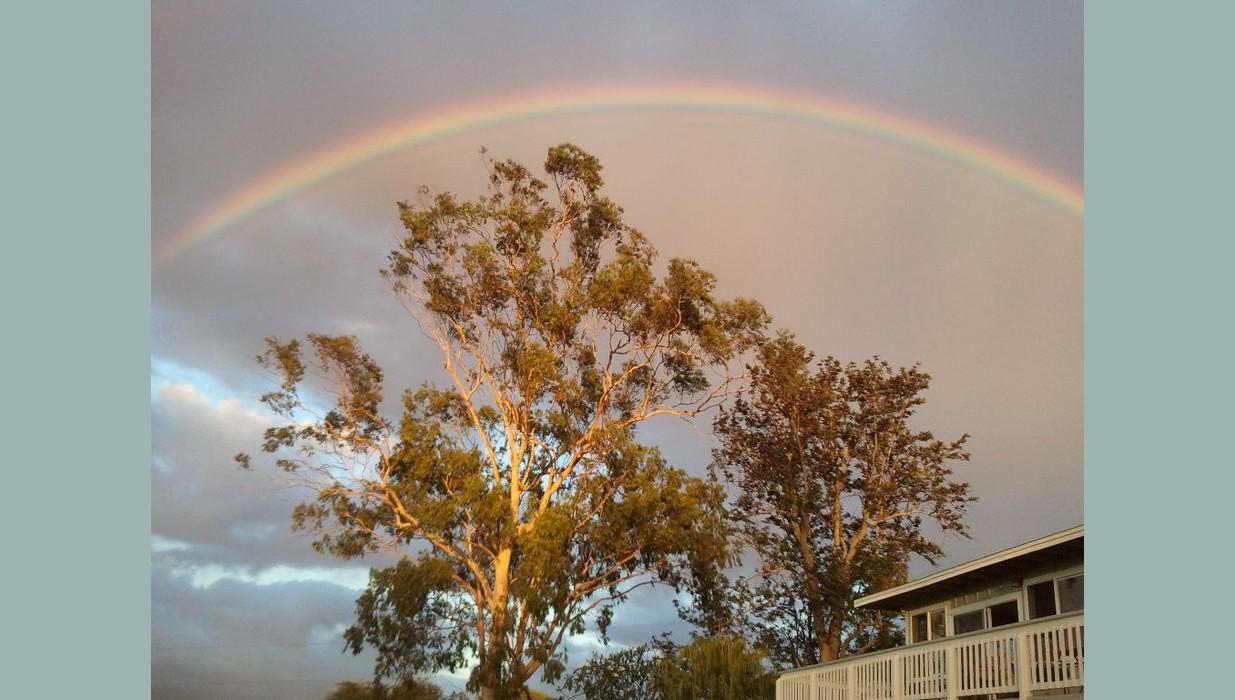 rainbow covers ranch.jpg