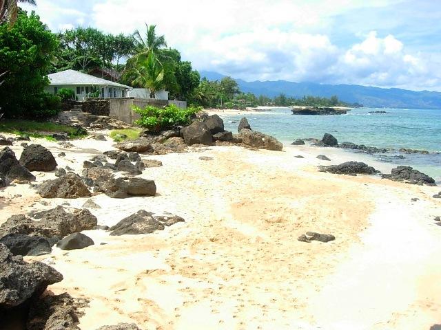 turtle cove beach big 4.jpg