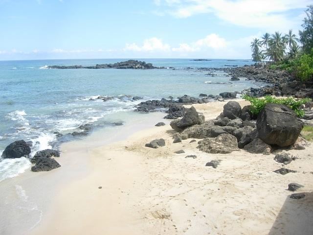 turtle cove beach big big.jpg