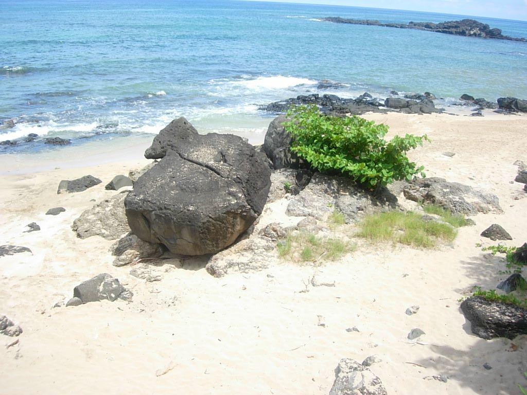 turtle cove beach big4.jpg